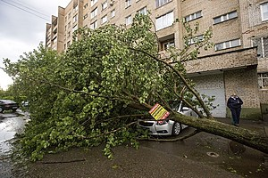 Hurricane in the Moscow region